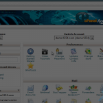 How to change the primary language in cPanel